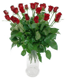 Tekirdağ çiçek , çiçekçi , çiçekçilik  11 adet kimizi gülün ihtisami cam yada mika vazo modeli