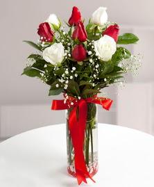 5 kırmızı 4 beyaz gül vazoda  Tekirdağ 14 şubat sevgililer günü çiçek