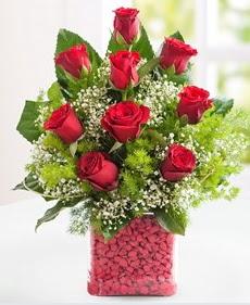 Cam içerisinde 9 adet kırmızı gül  Tekirdağ internetten çiçek siparişi