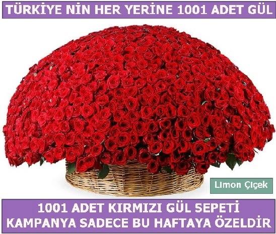 1001 Adet kırmızı gül Bu haftaya özel  Tekirdağ çiçek yolla