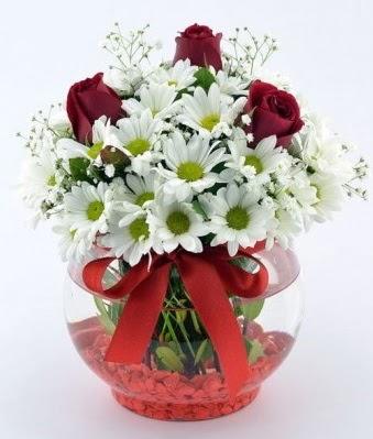 Fanusta 3 Gül ve Papatya  Tekirdağ internetten çiçek siparişi