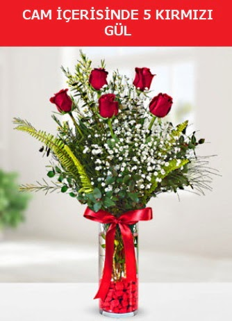 Cam içerisinde 5 adet kırmızı gül  Tekirdağ çiçekçiler