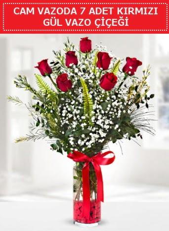 Cam vazoda 7 adet kırmızı gül çiçeği  Tekirdağ çiçek gönderme