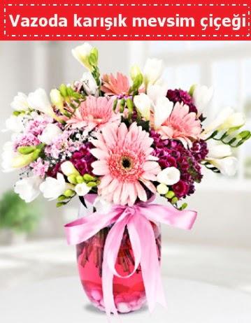 Vazoda karışık mevsim çiçeği  Tekirdağ hediye çiçek yolla