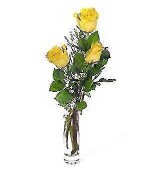 Tekirdağ online çiçek gönderme sipariş  3 adet kalite cam yada mika vazo gül