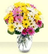 Tekirdağ online çiçek gönderme sipariş  mevsim çiçekleri mika yada cam vazo