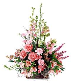 Tekirdağ çiçekçi mağazası  mevsim çiçeklerinden özel