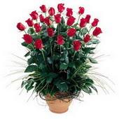 Tekirdağ anneler günü çiçek yolla  10 adet kirmizi gül cam yada mika vazo