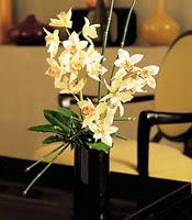 Tekirdağ çiçek siparişi vermek  cam yada mika vazo içerisinde dal orkide