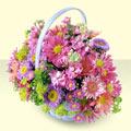 Tekirdağ çiçek yolla , çiçek gönder , çiçekçi   bir sepet dolusu kir çiçegi  Tekirdağ çiçek gönderme