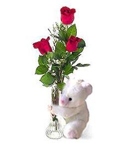 oyuncak ve 3 adet gül  Tekirdağ çiçekçiler