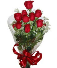 9 adet kaliteli kirmizi gül   Tekirdağ İnternetten çiçek siparişi