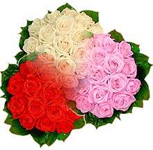 3 renkte gül seven sever   Tekirdağ hediye çiçek yolla