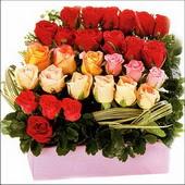 15 adet renkli gül ve cam   Tekirdağ internetten çiçek satışı