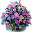 karisik mevsim kir çiçekleri  Tekirdağ çiçek gönderme