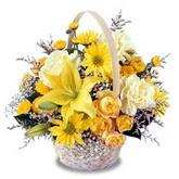 sadece sari çiçek sepeti   Tekirdağ çiçek gönderme