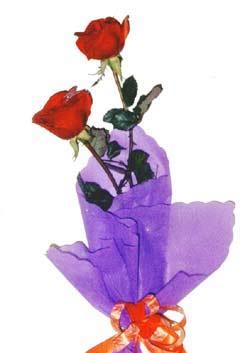 2  adet kirmizi gül buketi   Tekirdağ hediye çiçek yolla