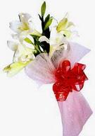 Tekirdağ hediye çiçek yolla  ince vazoda gerbera ve ayi