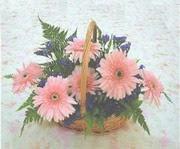 gerbera çiçeklerinde sepet   Tekirdağ çiçekçi telefonları