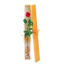 ince  kutuda  1  gül   Tekirdağ çiçekçi telefonları