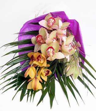 Tekirdağ 14 şubat sevgililer günü çiçek  1 adet dal orkide buket halinde sunulmakta
