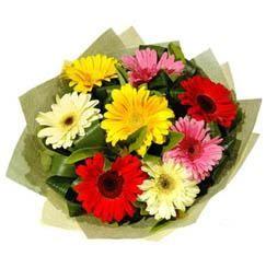9 adet karisik gerbera demeti  Tekirdağ güvenli kaliteli hızlı çiçek