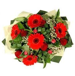Tekirdağ çiçekçi mağazası   5 adet kirmizi gül 5 adet gerbera demeti