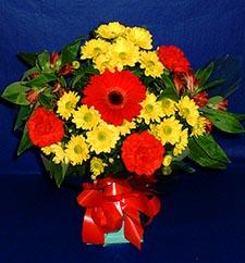 Tekirdağ çiçekçi mağazası  sade hos orta boy karisik demet çiçek