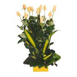 12 adet beyaz gül aranjmani  Tekirdağ yurtiçi ve yurtdışı çiçek siparişi