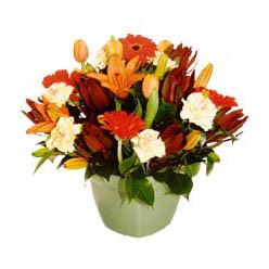 mevsim çiçeklerinden karma aranjman  Tekirdağ çiçek gönderme sitemiz güvenlidir