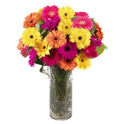 KARISIK GERBERALARDAN CAM VAZO TANZIMI  Tekirdağ online çiçekçi , çiçek siparişi