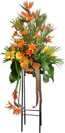 Tekirdağ çiçekçiler  perförje tanzimi dügün nikah ve açilislara