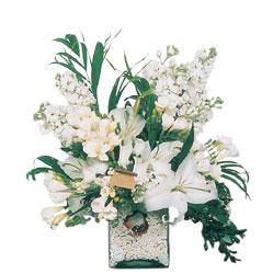 Tekirdağ online çiçek gönderme sipariş  sadece beyazlardan olusmus mevsim cam yada mika tanzim
