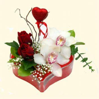 Tekirdağ çiçek servisi , çiçekçi adresleri  1 kandil orkide 5 adet kirmizi gül mika kalp
