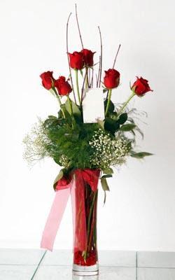 Tekirdağ 14 şubat sevgililer günü çiçek  6 adet kirmizi gül ve cam yada mika vazo