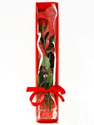 Tekirdağ çiçek yolla , çiçek gönder , çiçekçi   1 adet kutuda gül