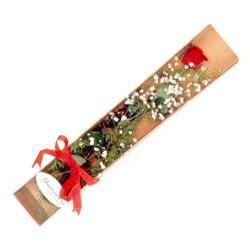 Tekirdağ hediye çiçek yolla  Kutuda tek 1 adet kirmizi gül çiçegi