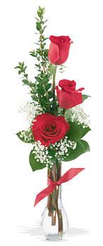 Tekirdağ 14 şubat sevgililer günü çiçek  mika yada cam vazoda 3 adet kirmizi gül