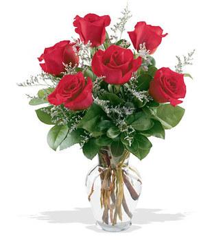 Tekirdağ 14 şubat sevgililer günü çiçek  cam yada mika vazoda 6 adet kirmizi gül