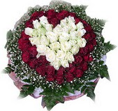 Tekirdağ güvenli kaliteli hızlı çiçek  27 adet kirmizi ve beyaz gül sepet içinde