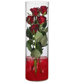 cam içerisinde 7 adet kirmizi gül  Tekirdağ çiçek siparişi vermek