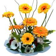 camda gerbera ve mis kokulu kir çiçekleri  Tekirdağ çiçek , çiçekçi , çiçekçilik