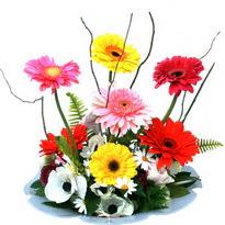 Tekirdağ çiçek siparişi sitesi  camda gerbera ve mis kokulu kir çiçekleri