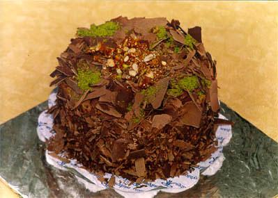 Çikolatali 4 ila 6 kisilik yas pasta  Tekirdağ çiçek gönderme