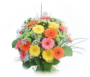 13 adet gerbera çiçegi buketi  Tekirdağ cicekciler , cicek siparisi