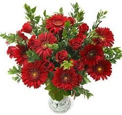 5 adet kirmizi gül 5 adet gerbera aranjmani  Tekirdağ çiçek siparişi sitesi
