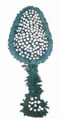Tekirdağ cicekciler , cicek siparisi  dügün açilis çiçekleri  Tekirdağ online çiçekçi , çiçek siparişi