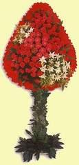 Tekirdağ çiçek satışı  dügün açilis çiçekleri  Tekirdağ çiçek mağazası , çiçekçi adresleri