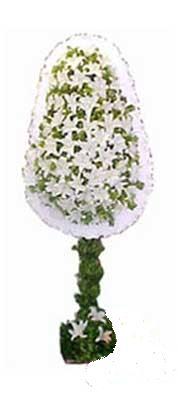 Tekirdağ çiçekçiler  nikah , dügün , açilis çiçek modeli  Tekirdağ cicekciler , cicek siparisi