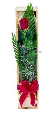 1 adet kutuda kirmizi gül  Tekirdağ çiçek gönderme